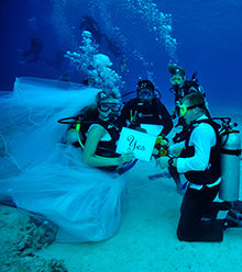 Wedding under the water in the Oceanarium